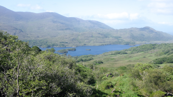 Lady's View Ring of Kerry