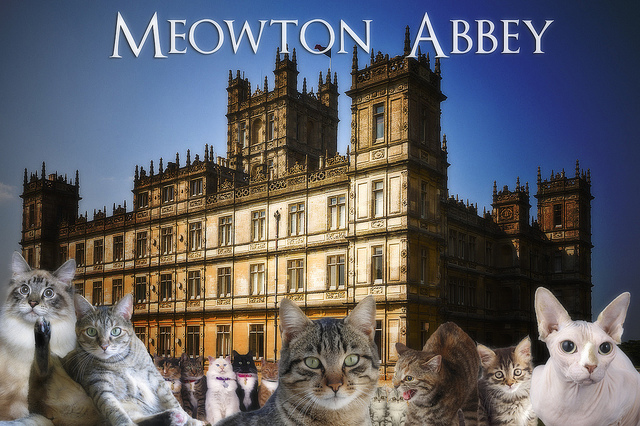 Meowton Abbey